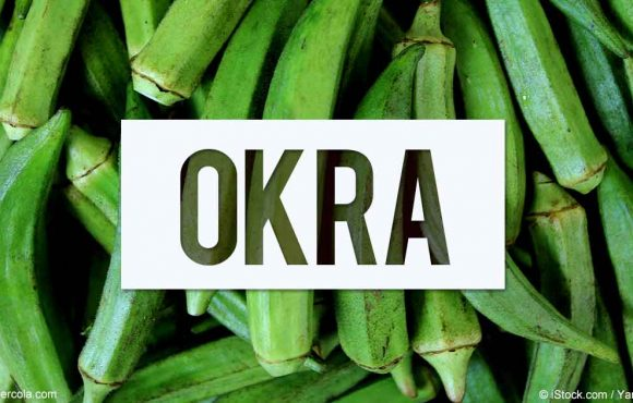 ALL YOU NEED TO KNOW ABOUT OKRA!